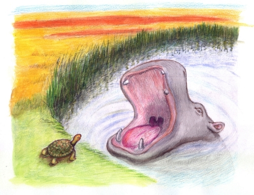 "tortoise and hippo from ""Were They Equal?"""