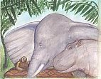 "Illustration of tortoise, elephant, and hippo from ""Were They Equal"" by Arnold Perey"