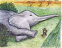 "tortoise and elephant from ""Were They Equal?"" by Arnold Perey"